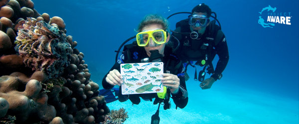PADI Fish Identification Diver