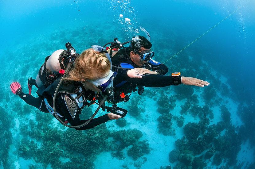 PADI Underwater Navigator