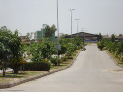 Wide roads with Greenery Every where