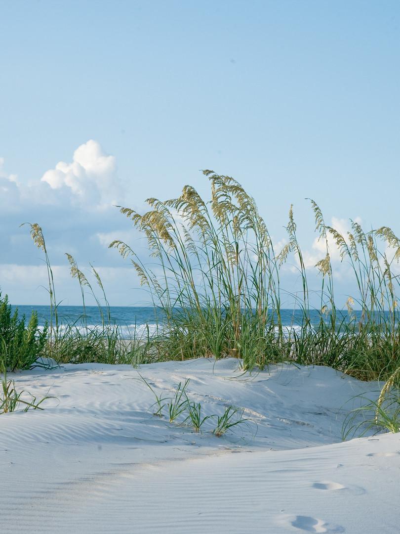ICR dunes.jpg
