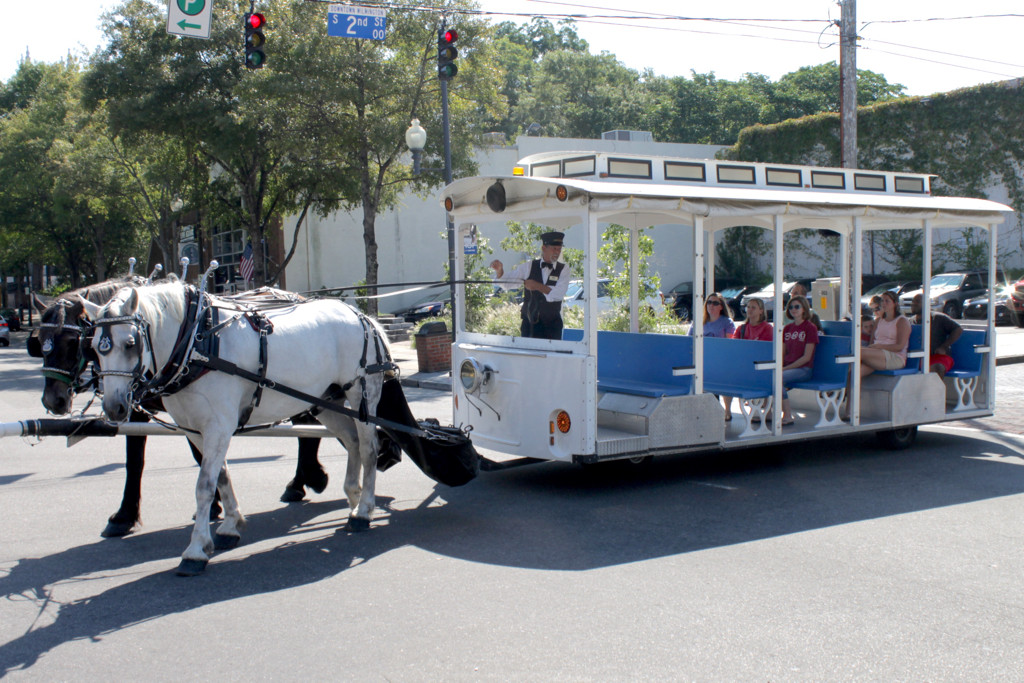 Trolley (1).jpg