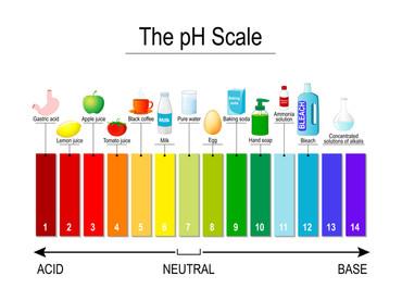Acid - Alkaline Chart
