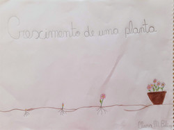 Autora: Clara Madeiros Beling