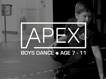 APEX - Website Image.png