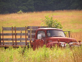 Rusted Glory - Summer