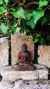 Japanese Buddah
