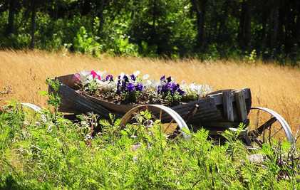 Flowers in a Wagon