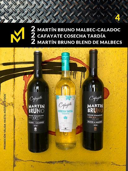 PROMO VINO 4 / 6 Botellas de vino 750 cc