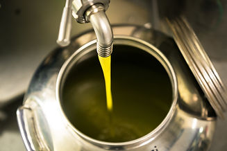 We use only use premium oils in our soaps. The Olive Oil used in our soaps is imported from Italy