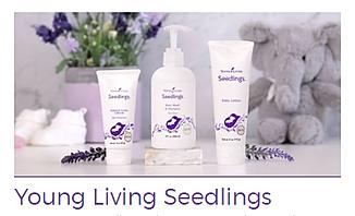 seedlings.png