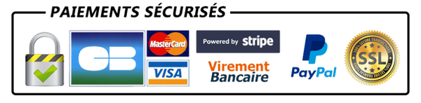 paiements-s%C3%A9curis%C3%A9s_edited.png
