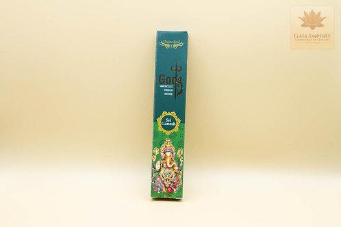 Divine Soul Gods Sri Ganesh