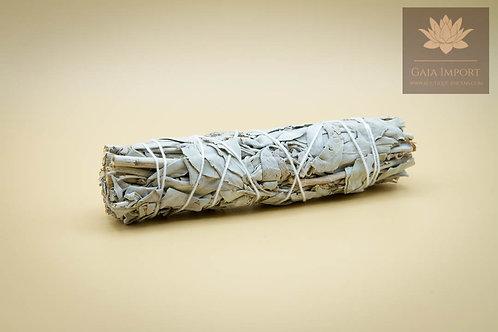 Fagot sauge blanche 50gr