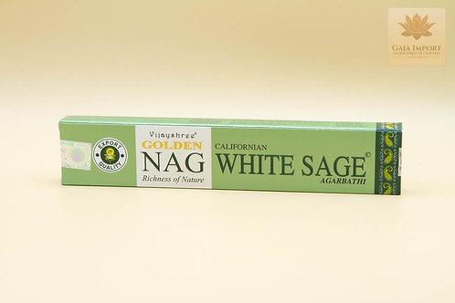 Vijayshree Golden Nag Sauge blanche