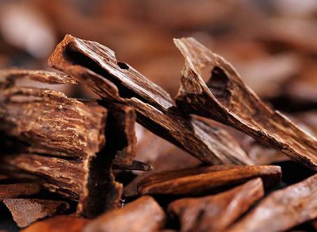 Les propriétés du bois de santal