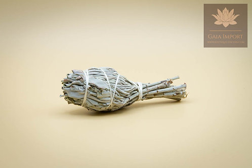 Torche Sauge Blanche (Salvia Apiana) 20gr