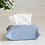Thumbnail: Striped Blue Tissue Cover