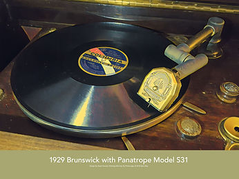 Brunswick S31
