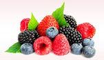 berries_edited.jpg