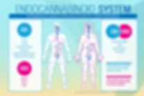 Meliora-Integrative-Medicine-Endocannabi
