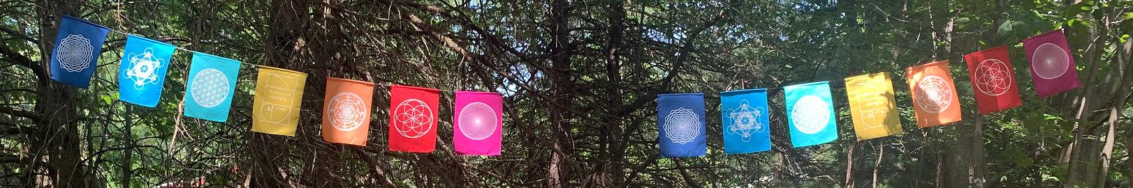 flags copy.jpg