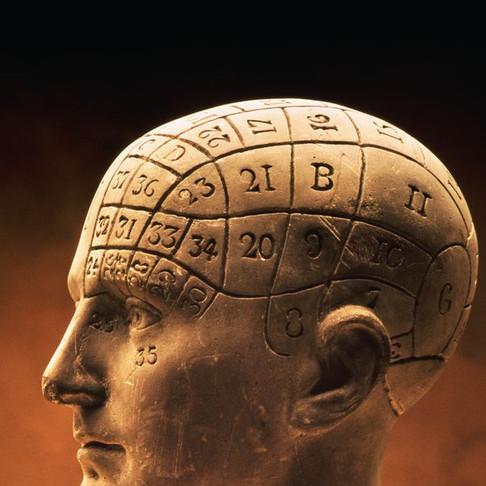 phrenology-bust-919816-002-579a617e5f9b5
