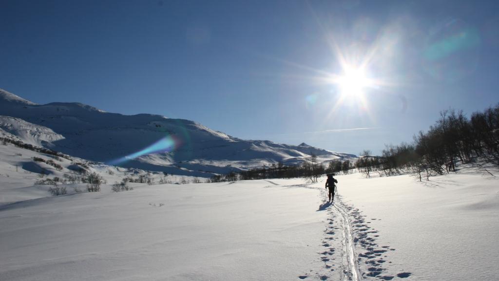 bjorli_langrenn_bjorli_skiskole_norge1