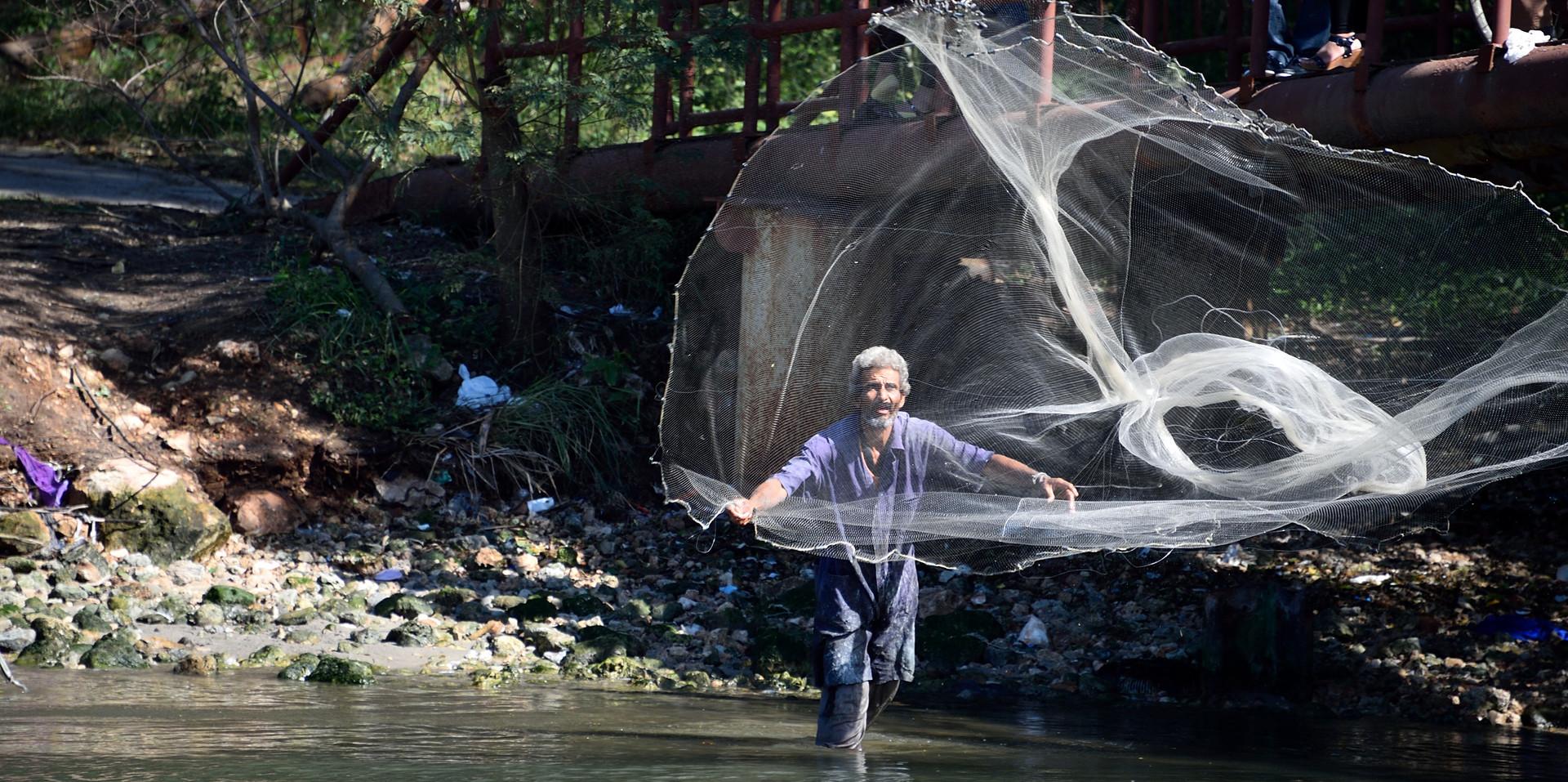 Cojimar Fisherman, 2016