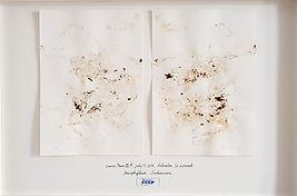 4%C3%A8me_Biennale_Internationale_de%20_