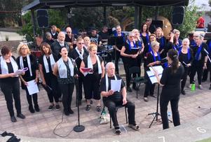 Anglesea Community Rock Choir Band
