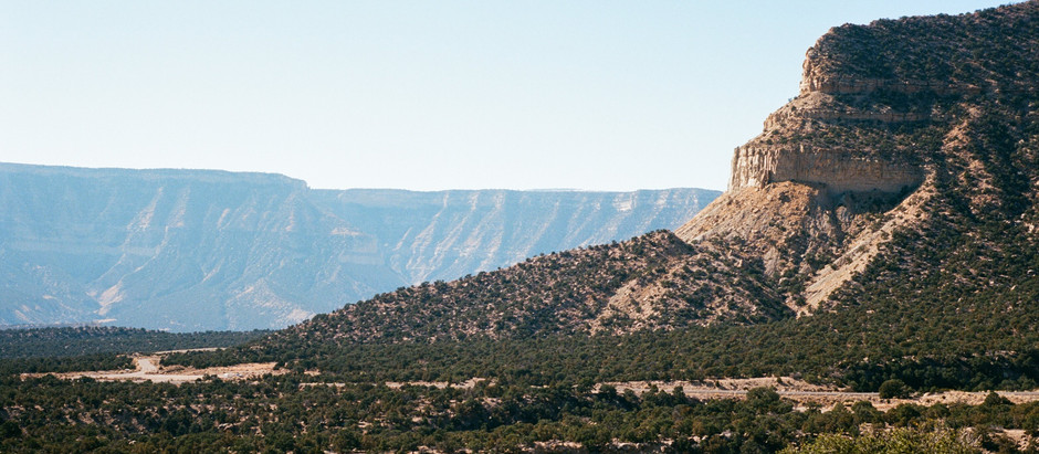 Guest Post: Markham Tuck - Film Photos from Joe's Valley and Red Rocks