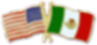 american mexican flag 1-4 small purple p
