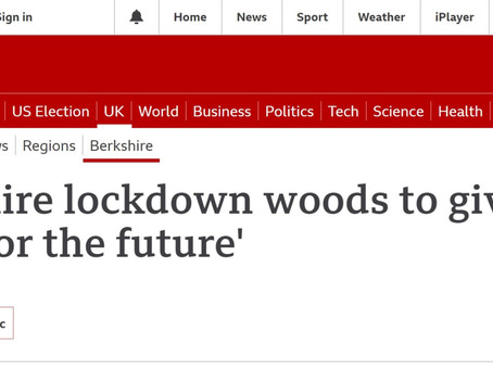 Lockdown Woods features on BBC Berkshire