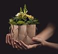 flowers-1338641_640%20Image%20par%20comf