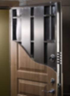 Custom Security Door in NV