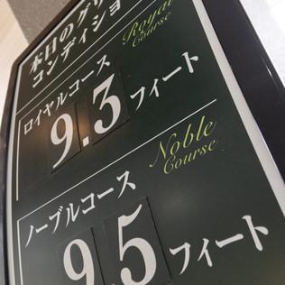 PAP_328.jpg