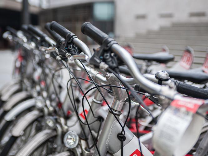 Bikes in a Row_Steve Zarrella_24.1_24.1.