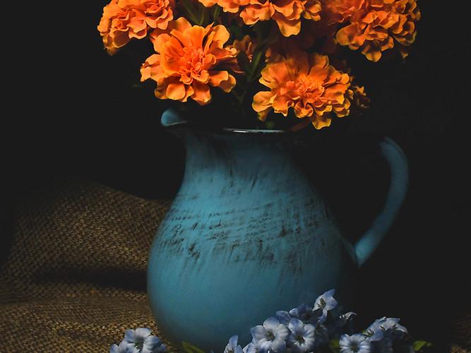 Pitcher and Flowers_Michael Krampitz_Fir