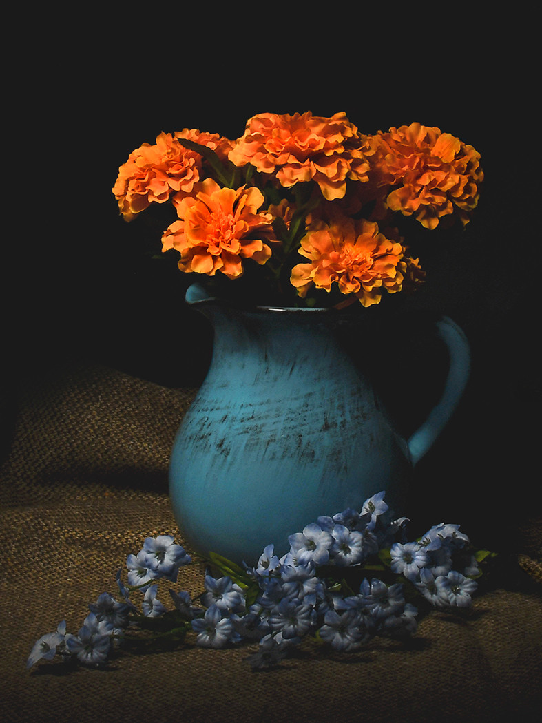 Pitcher and Flowers_Michael Krampitz_Fir