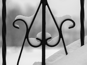 Iron & Snow_Fred Tullock_Second Place_Se