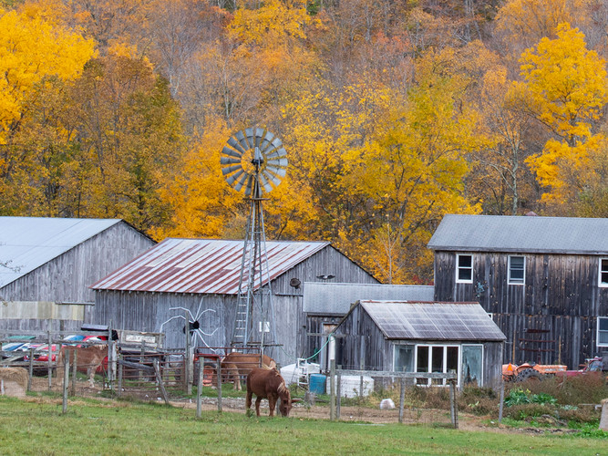 Vermont Country_Third Place_Third Place.