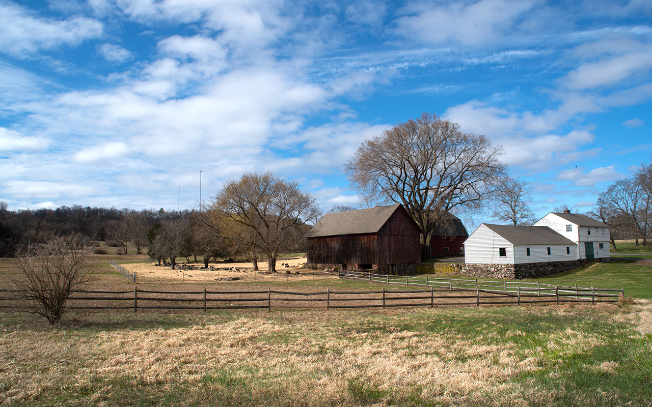 Country Farm_20_20.jpg