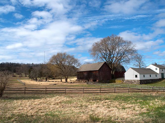 Country Farm_20_20.jpg