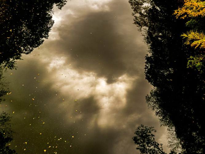 Looking up into the River_Michael Schuld