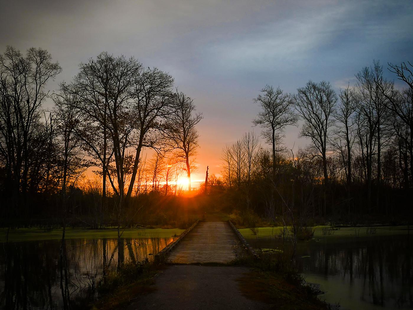 Path to the Sun_Michael Krampitz_22.jpg