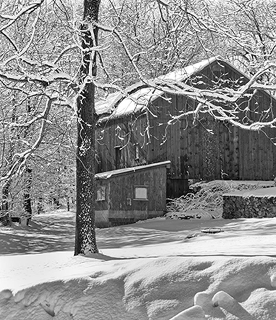 Snow Scene_Frank Giarnese_20.jpg