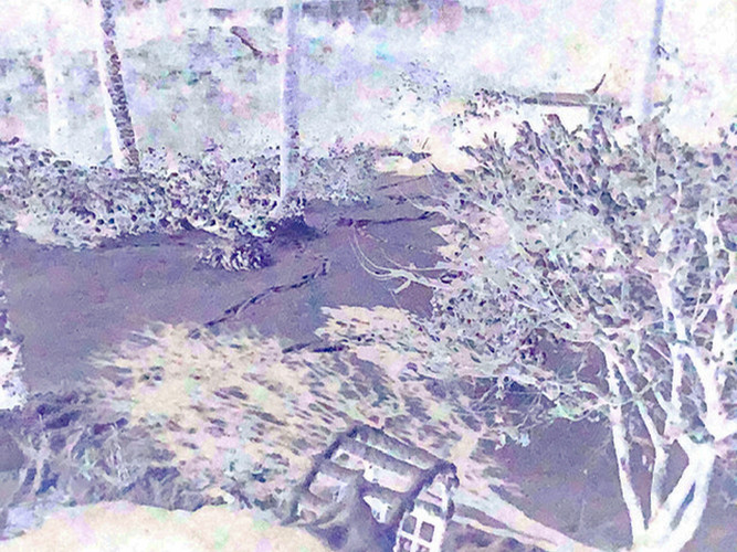 Moon Shadow Negative_Michael Schulde_15_