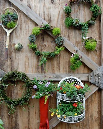 Garden Wall of Fame_Kerry McCoy_21.5.jpg