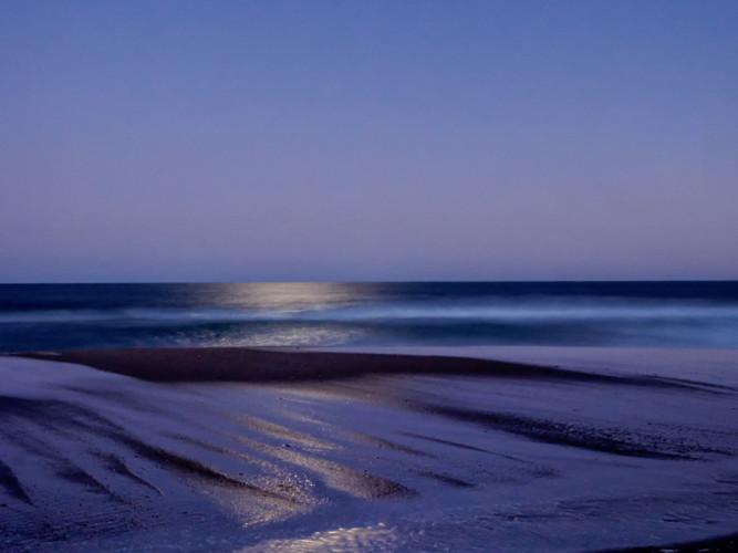 David Grossmann      Moon Rise