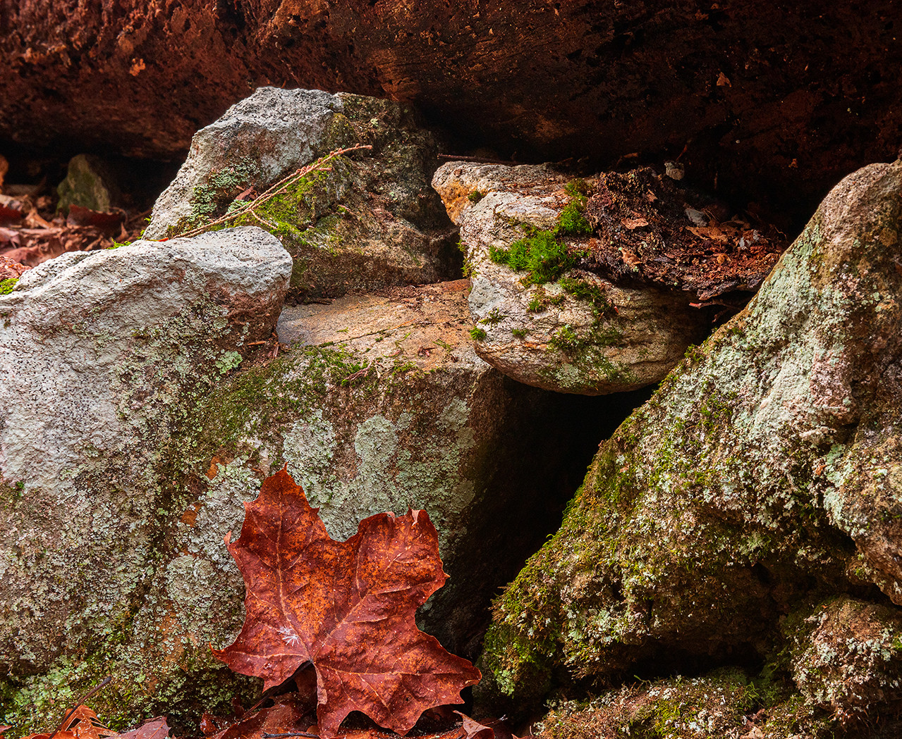 Stone Gathering_22_22.jpg